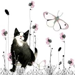 Grusskarte Katze im Gras
