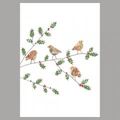 Weihnachtskarte Rotkehlchen