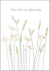 Doppelkarte Gänseblümchen im Gras