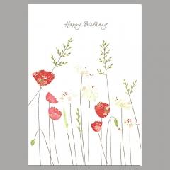Doppelkarte Mohnblumen mit Gänseblümchen