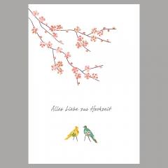 Doppelkarte Gelb und Grün