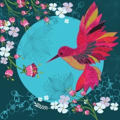Doppelkarte Kolibri