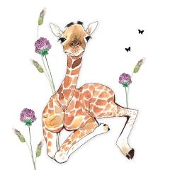 Doppelkarte Giraffe