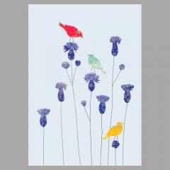 Doppelkarte Vögel