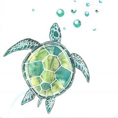 Doppelkarte Wasserschildkröte