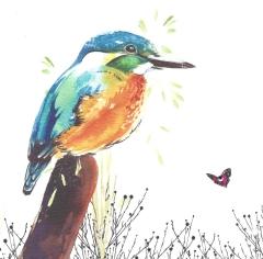 Doppelkarte Vogel
