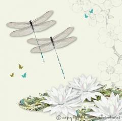Grusskarte Libellen